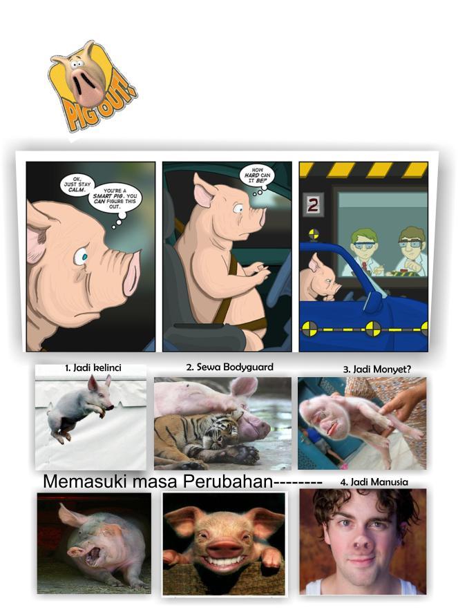 reaksi babi setelah penyebaran flu babi